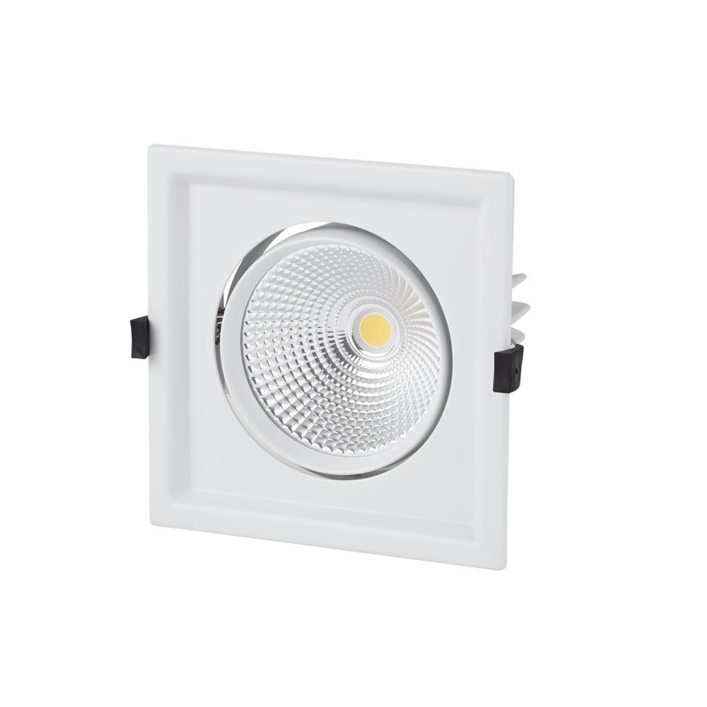 Biard 30W Kantelbare COB LED Inbouwspot met incl Lamp & Driver - Wit
