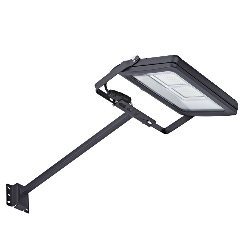 Biard 50W LED Breedstraler en Arm 50cm