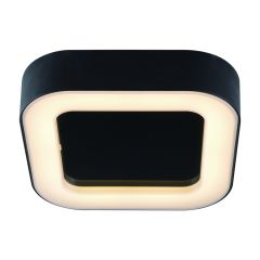 Biard Ambiente Badkamer Plafondlamp Zwart 13W SMD LED IP54